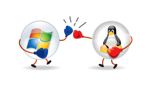 Linux & Windows Web Hosting Hyderabad